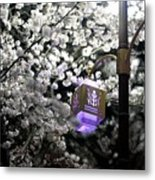 Streetlights In Blossoms Metal Print
