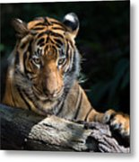 Strength Through Darkness Metal Print