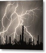 Striking Photography In Sepia Metal Print