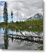 String Lake In Grand Tetons Metal Print