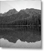 String Lake Reflections Bw Metal Print