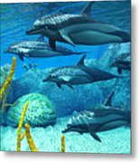 Striped Dolphins Metal Print