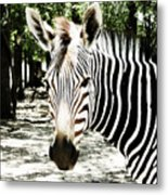 Stripes And Symmetry  Metal Print