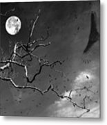 Stroke Of Midnight Metal Print