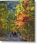Strolling The Upper Cascades Trail Metal Print