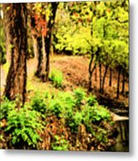 Strolling Through The Park Metal Print by Savannah Fonner