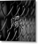 Stuck In A Fence Metal Print