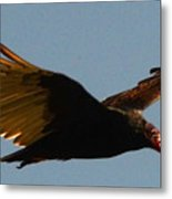 Studebaker Hawk Metal Print