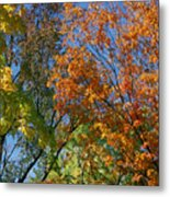 Study For Autumn 2 Metal Print