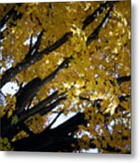 Study For Autumn 3 Metal Print