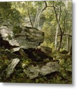 Study From Nature   Rocks And Trees Metal Print