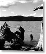 Stump Lake Metal Print