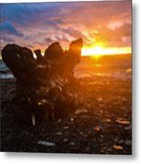 Stump On Lake Erie Metal Print
