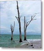 Stump Pass Triplets Metal Print