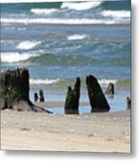 Stumpy Beach Metal Print