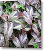 Subdued Leaves Metal Print