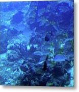 Submarine Underwater View Metal Print