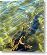 Submerged Tree Abstract Metal Print