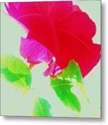 Subtle Rose Metal Print