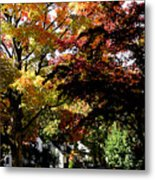 Suburban Autumn Metal Print