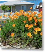 Suburban House On Orchard Avenue With Poppies Hayward California 3 Metal Print