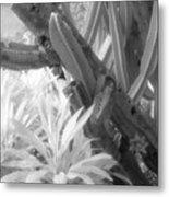 Succulent Delight Metal Print
