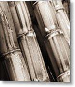 Sugar Cane - Sepia Metal Print