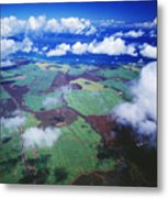Sugarcane Fields In Central Maui Metal Print