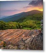 Summer Along The Appalachian Trail Metal Print