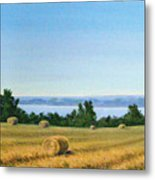 Summer At Cayuga Lake Metal Print