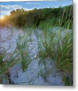 Summer At The Cape IIi Metal Print