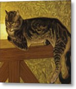 Summer Cat On A Balustrade Metal Print
