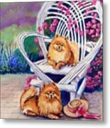 Summer Day - Pomeranian Metal Print by Lyn Cook