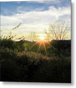 Summer Day Going Into Evening.  Metal Print