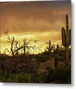 Summer Desert Skies  Metal Print