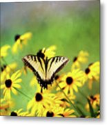 Summer Dream Metal Print