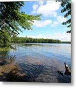 Summer Dreaming On Lake Umbagog  Metal Print
