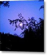Summer Full Moon Metal Print by Garnett  Jaeger