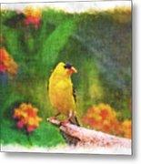 Summer Goldfinch - Digital Paint 4 Metal Print