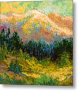 Summer High Country Metal Print