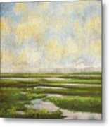 Summer Marsh Metal Print