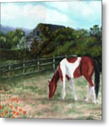 Summer Morning In The Country Metal Print