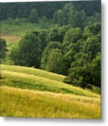 Summer Morning On The Farm Metal Print