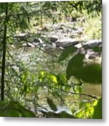 Summer Mountain Creek Metal Print