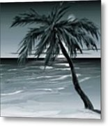 Summer Night In Florida Metal Print
