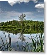 Summer On Waukeena Lake Metal Print