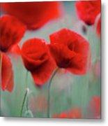Summer Poppy Meadow 2 Metal Print