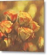 Summer Roses #1 Metal Print by Pat Abbott