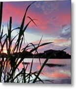 Summer Sunset 03 Metal Print