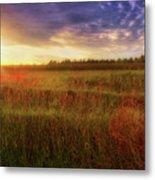 Summer Sunset - Waukesha Wisconsin  Metal Print